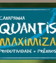 Syngenta Quantis Maximiza